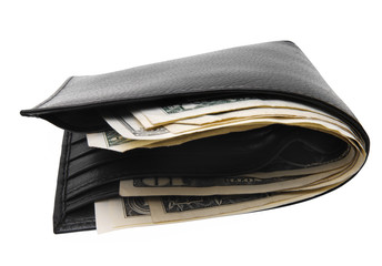 dollar purse