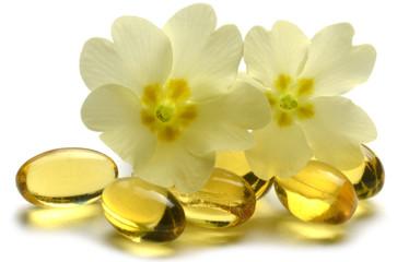 Primula vulgaris サクラソウ属 Primeln Первоцвет Primrose