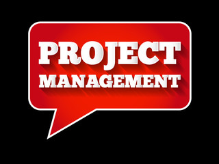 Project Management message bubble, business concept