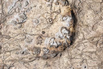 texture roccia e sale