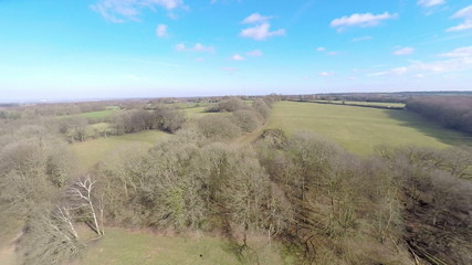 Aerial shot of the contryside above the trees