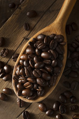 Organic Dry Roasted Coffee Beans