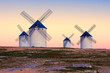 windmill in Campo de Criptana, La Mancha, Spain - 79195120