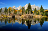 Water reflections in a clear pond in the Grand Tetons.