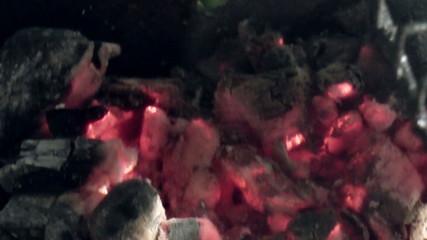 The Glowing Hot Wood Embers