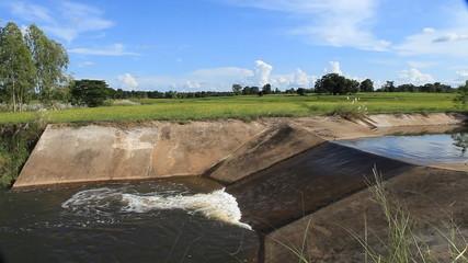 irrigation canal, water flow pass weir crest among rice field