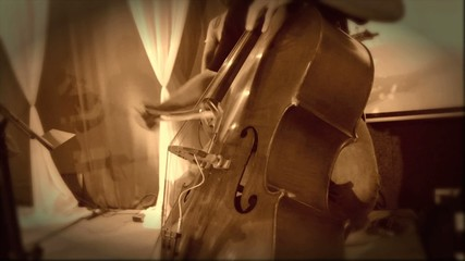Double Bass Musical Instrument
