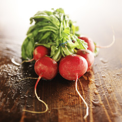 freshly picked radishes with copy space on wooden table