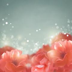 Shining flowers roses background