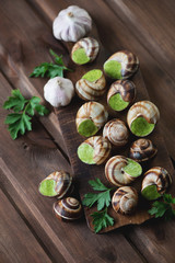 Bourgogne snails with garlic butter, selective focus