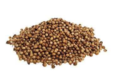 Heap coriander seeds on a white background