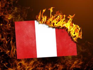 Flag burning - Peru