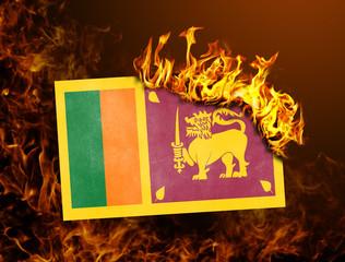 Flag burning - Sri Lanka