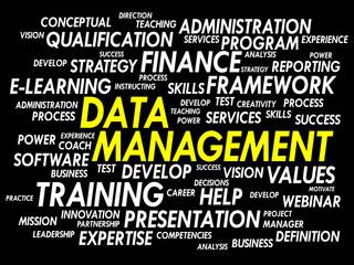 Data Management word cloud, business concept