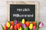 Herzlich Willkommen - 79215534