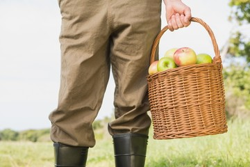 Farmer holding basket of apples