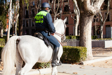 Policeman riding a horse in Madrid.