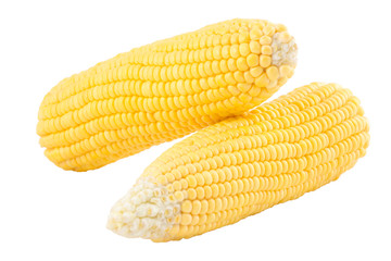 Two sweetcorn on white background