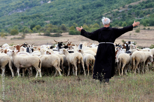 Papiers peints Sheep pastore e pecore