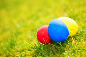 Colorful easter eggs on green meadow
