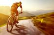 Leinwanddruck Bild - Mountainbike in the Mountains
