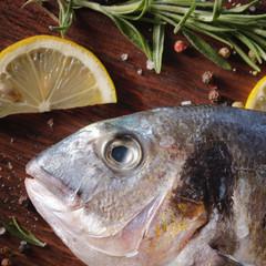 Raw dorado fish with rosemary and sea salt