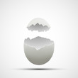 Vector icons broken chicken egg - 79235727