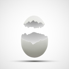 Vector icons broken chicken egg