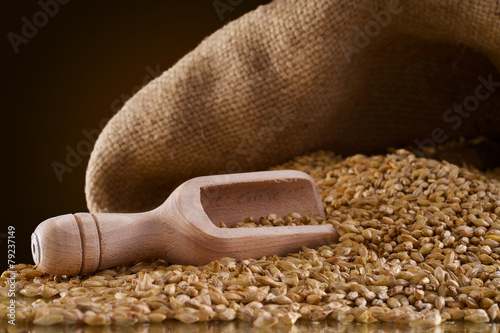 Fotobehang Granen wheat grains timilia