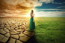 """Постер, картина, фотообои """"Climate Change Concept. Landscape green grass and drought land"""""""