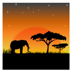 Silhouettes of an elephant