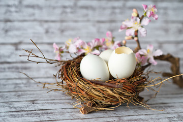 Conceptual Easter Eggs in Nest with Little Flowers