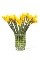 bouquet of yellow lent lily (daffodil) on white