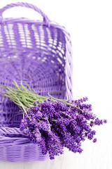 basket of lavende