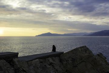 Ligurian seashore, sunset panorama. Color image