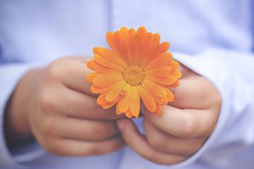 manos de niño con flor