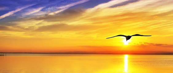 panoramica del amanecer