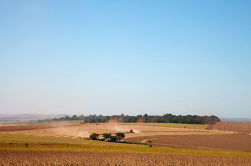 Soybean field being harvested.