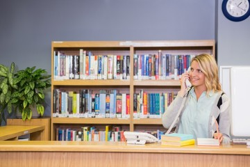 Pretty librarian working in the library