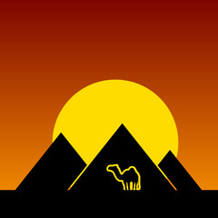 camel and pyramids color vector