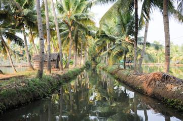 River of the backwaters at Kollam