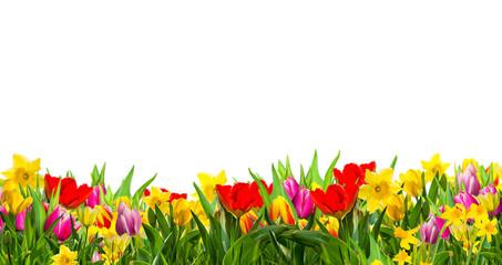 Frühling Gutschein
