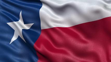 Seamless loop of Texas state flag