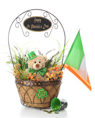 Teddy's St. Patrick's Day Wishes