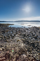 low tide on a rocky beach near Victoria, BC, Canada