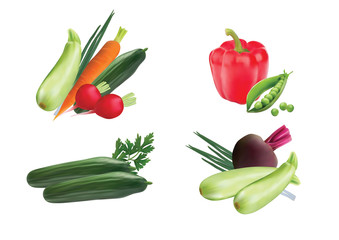 Set of vegetables on a white background. Vector image