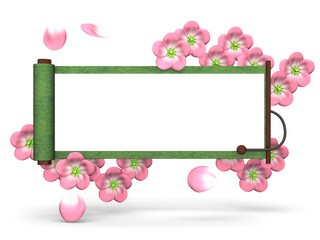 Cherry Blossoms And Scroll On White Background