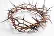 Obrazy na płótnie, fototapety, zdjęcia, fotoobrazy drukowane : A crown of thorns on a white background - Easter. religion.