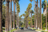 Streets of Beverly Hills - 79266547
