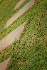 Street Walk of stone on a background of green grass.